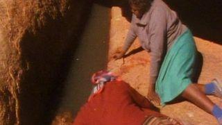 Dreamings: Art of Aboriginal Australia
