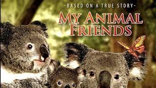 My Animal Friends