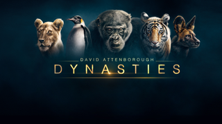 David Attenborough's Dynasties